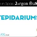 What is a tepidarium