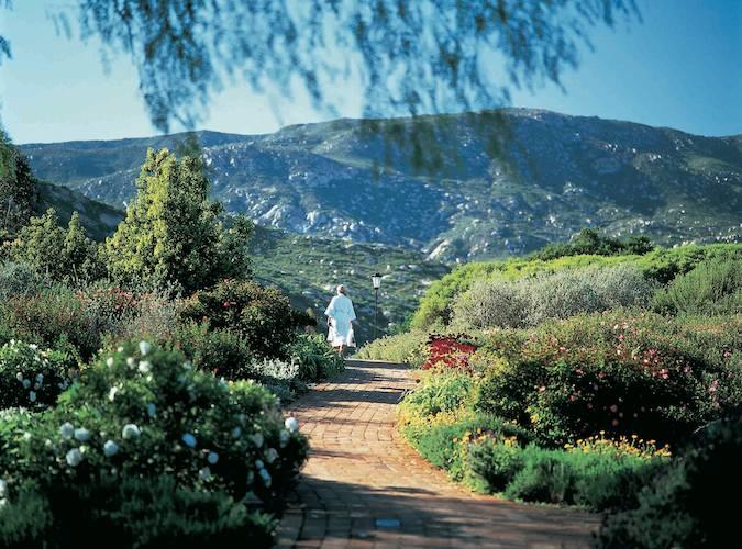 Rancho La Puerta Meadow